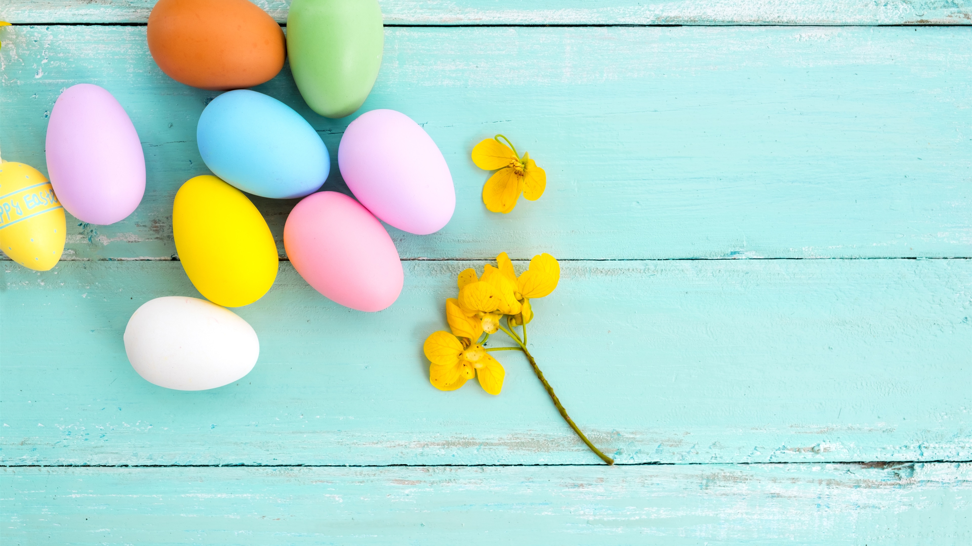 Colorful-eggs-yellow-flower-blue-wood-background-Easter_3840x2160